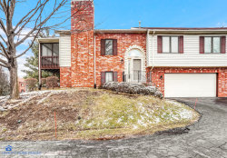Photo of 11207 Cameron Parkway, Orland Park, IL 60467 (MLS # 10614142)