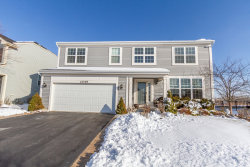 Photo of 1049 Clearwater Drive, Pingree Grove, IL 60140 (MLS # 10617369)