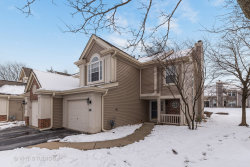 Photo of 935 Little Falls Court, Elk Grove Village, IL 60007 (MLS # 10617684)