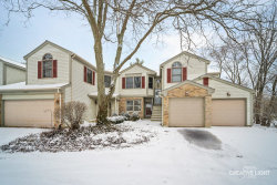 Photo of 27W178 Emerson Court, Unit Number 178, Winfield, IL 60190 (MLS # 10618580)