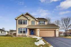 Photo of 3916 Boone Creek Circle, McHenry, IL 60050 (MLS # 10619996)