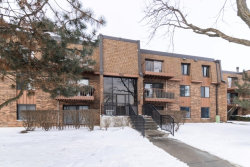 Photo of 612 S Waterford Road, Unit Number 3D, Schaumburg, IL 60193 (MLS # 10620008)