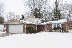 Photo of 1253 Selwyn Lane, Buffalo Grove, IL 60089 (MLS # 10620721)