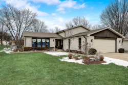 Photo of 1007 Spring Cove Drive, Schaumburg, IL 60193 (MLS # 10631259)