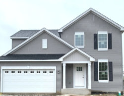 Photo of 3159 Patterson Road, Montgomery, IL 60538 (MLS # 10632472)