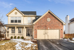 Photo of 11621 S Olympic Lane, Plainfield, IL 60585 (MLS # 10632629)