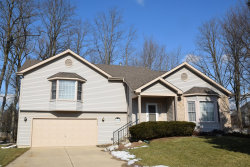 Photo of 4824 Barnwood Court, McHenry, IL 60050 (MLS # 10635398)