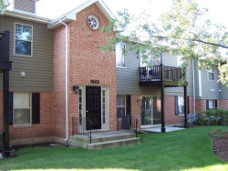 Photo of 1543 Raymond Drive, Unit Number 202, Naperville, IL 60563 (MLS # 10635921)