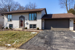 Photo of 654 Springfield Drive, Roselle, IL 60172 (MLS # 10637424)