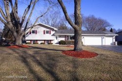 Photo of 28W540 Leverenz Road, Naperville, IL 60564 (MLS # 10638913)