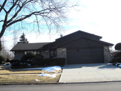 Photo of 8209 Wheeler Drive, Orland Park, IL 60462 (MLS # 10640837)