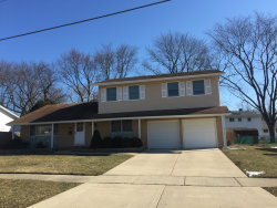 Photo of 107 S Belle Avenue, Palatine, IL 60074 (MLS # 10642277)
