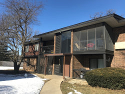 Photo of 4710 W Northfox Lane, Unit Number 1, McHenry, IL 60050 (MLS # 10644075)