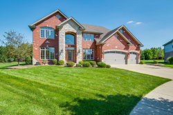 Photo of 8004 Nature Creek Court, Frankfort, IL 60423 (MLS # 10644752)