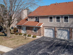Photo of 9238 Whitehall Lane, Unit Number 36A, Orland Park, IL 60462 (MLS # 10645845)