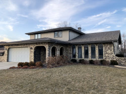 Photo of 8032 Wheeler Drive, Orland Park, IL 60462 (MLS # 10647821)