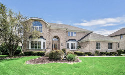 Photo of 14613 Crystal Tree Drive, Orland Park, IL 60462 (MLS # 10648190)