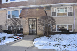 Photo of 9913 W 58th Street, Unit Number 9, Countryside, IL 60525 (MLS # 10651592)