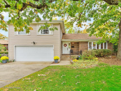 Photo of 903 Linden Court, Western Springs, IL 60558 (MLS # 10664653)