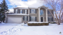 Photo of 611 Long Cove Drive, Lake In The Hills, IL 60156 (MLS # 10667212)
