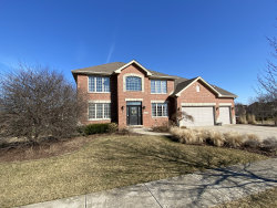 Photo of 19417 Beaver Creek Lane, Mokena, IL 60448 (MLS # 10668419)