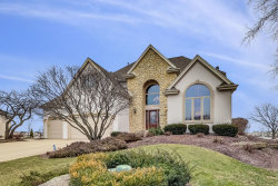 Photo of 13261 Lakepoint Drive, Plainfield, IL 60585 (MLS # 10671150)