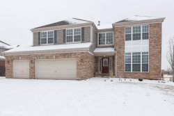Photo of 238 Ian Avenue, New Lenox, IL 60451 (MLS # 10672980)