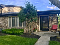 Photo of 7449 W 153rd Street, Unit Number 54, Orland Park, IL 60462 (MLS # 10673118)