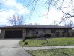 Photo of 808 Cessna Court, New Lenox, IL 60451 (MLS # 10674883)