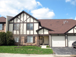Photo of 1736 N Emerald Bay, Unit Number 7, Palatine, IL 60074 (MLS # 10675318)