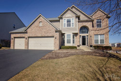 Photo of 987 Tanager Court, Antioch, IL 60002 (MLS # 10677789)