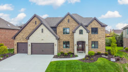 Photo of 17001 Sheridans Trail, Orland Park, IL 60467 (MLS # 10677895)