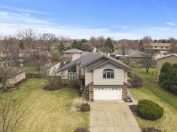 Photo of 1514 Andrea Drive, New Lenox, IL 60451 (MLS # 10679857)