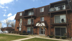 Photo of 5723 129th Street, Unit Number 9E, Crestwood, IL 60418 (MLS # 10681074)