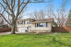 Photo of 305 W Illinois Highway, New Lenox, IL 60451 (MLS # 10682684)
