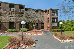 Photo of 52 N Pistakee Lake Road, Unit Number 3, Fox Lake, IL 60020 (MLS # 10686958)