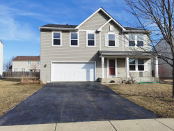 Photo of 14445 Independence Drive, Plainfield, IL 60544 (MLS # 10707983)