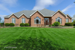Photo of 6914 Tall Grass Court, Spring Grove, IL 60081 (MLS # 10713232)