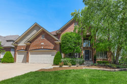 Photo of 3544 Stackinghay Drive, Naperville, IL 60564 (MLS # 10728878)