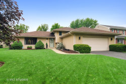 Photo of 1217 Hidden Spring Drive, Naperville, IL 60540 (MLS # 10729161)