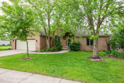 Photo of 1735 Little Willow Road, Morris, IL 60450 (MLS # 10729406)