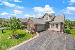 Photo of 9318 Dunmore Drive, Orland Park, IL 60462 (MLS # 10730350)
