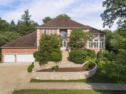 Photo of 2224 River Woods Drive, Naperville, IL 60565 (MLS # 10737287)