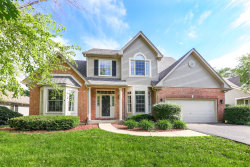 Photo of 2312 Wild Timothy Road, Naperville, IL 60564 (MLS # 10738121)