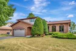 Photo of 13711 Lincolnshire Drive, Orland Park, IL 60462 (MLS # 10759308)