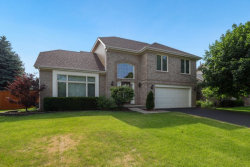 Photo of 704 Autumn Drive, Bolingbrook, IL 60490 (MLS # 10763486)