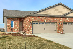 Photo of 1905 Roseland Drive, Unit Number 1905, Mahomet, IL 61853 (MLS # 10763840)