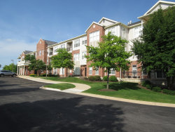 Photo of 12950 Meadow View Court, Unit Number 210, Huntley, IL 60142 (MLS # 10765594)