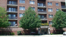 Photo of 450 S Western Avenue, Unit Number 206, Des Plaines, IL 60016 (MLS # 10767295)