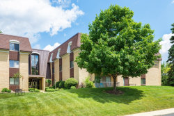 Photo of 1103 N Mill Street, Unit Number 311, Naperville, IL 60563 (MLS # 10767422)